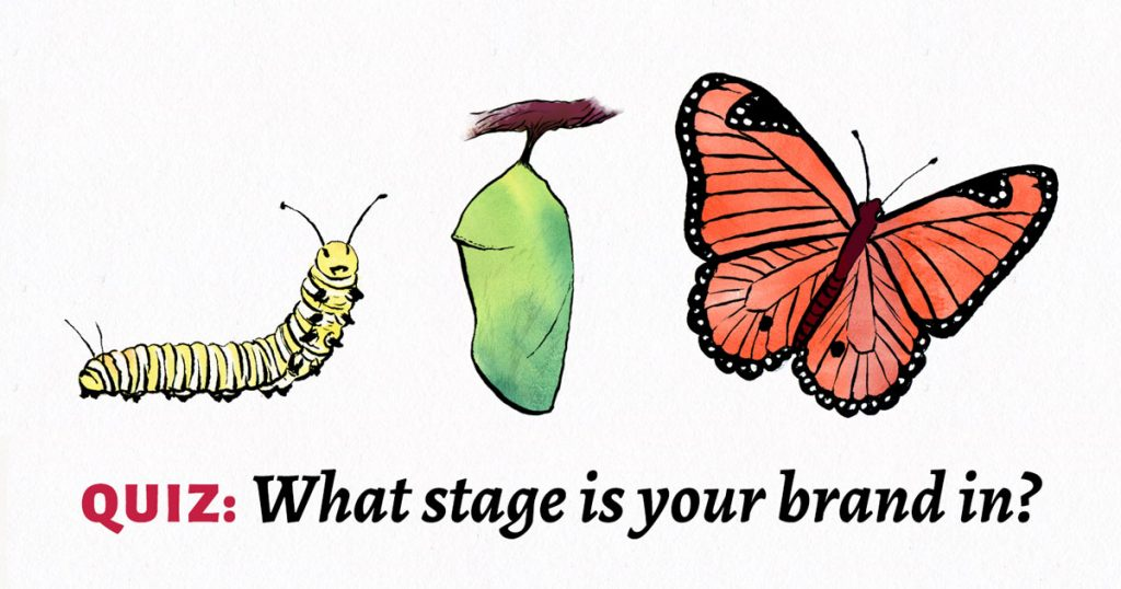 Quiz: What stage is your brand in?